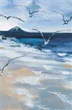Pacific Breezes II Art Print