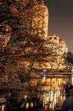 Central Park Glow I Art Print