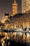 Central Park Glow II Art Print