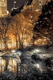 Central Park Glow III Art Print