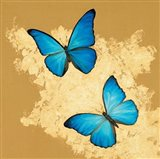 Cerulean Butterfly I Art Print