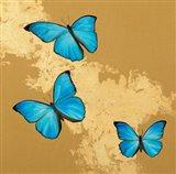 Cerulean Butterfly II Art Print