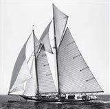 Adrift II Art Print