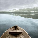 Lake Quinault Art Print