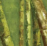 Bamboo Columbia I Art Print