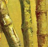 Bamboo Columbia IV Art Print