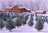 Xmas Tree Farm Art Print
