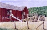 Hay Day Art Print