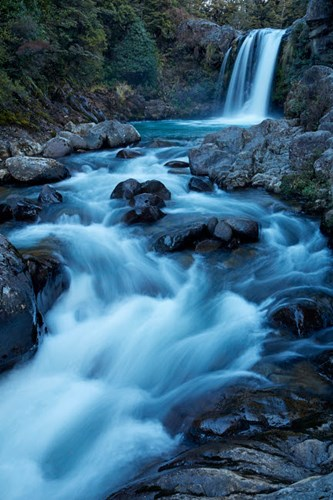 Tawhai Falls, Whakapapanui Stream, Tongariro National Park, New Zealand Art Print by David Wall / Danita Delimont