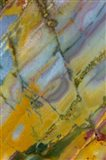 Crayola Jasper from Nevada Art Print