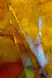 Piute Jasper 2 Art Print