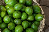 Benin, Ouidah, Produce Market Avocados Art Print