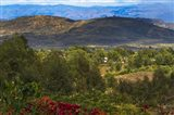 Red flowers and Farmland in the Mountain, Konso, Ethiopia Art Print