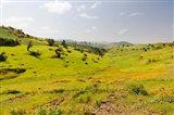 Landscape, Gonder and Lake Tana, Ethiopia Art Print