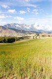 Grassy plains, Semien Mountains National Park, Ethiopia Art Print