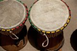 Gambia, Banju, Wooden drums, musical instrument Art Print