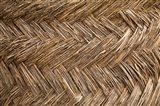 West Africa, Ghana, Yendi. Woven thatch. Art Print