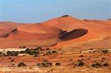 Sand dune at Sossusvlei, Namib-Naukluft National Park, Namibia Art Print