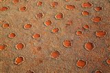 Fairy circles dotting the landscape of the Namib-Rand Nature Reserve, Sossusvlei, Nambia Art Print