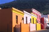 Native Area on Wales Street, Cape Town, South Africa Art Print