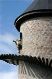 Fairview winery, goat tower, Paarl, South Africa Art Print