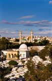 Bourguiba Mausoleum and cemetery in Sousse Monastir, Tunisia, Africa Art Print