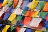 Prayer Flags at Dochu La, Bhutan Art Print