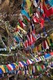 Prayer Flags, Thimphu, Bhutan Art Print