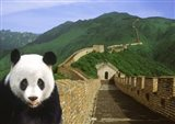 Panda at the Great Wall of China Art Print