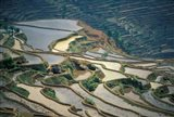 Flooded Rice Terraces of Honghe, China Art Print