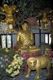 Gold Tiger and Bhuddha Sculpture at the Golden Temple, China Art Print