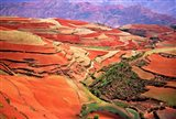China, Yunnan, Tilled Red Laterite, Agriculture Art Print
