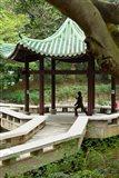 Tai Chi Chuan in the Chinese Garden Pavilion at Kowloon Park, Hong Kong, China Art Print