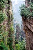 Stone Spires, Zhangjiajie National Forest Park, Hunnan, China Art Print