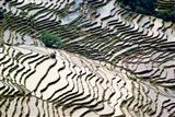 Flooded Bada Rice Terraces, Yuanyang County, Yunnan Province, China Art Print