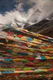 Prayer Flags, Milk Lake, Yading Natural area, China Art Print