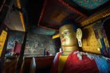 Golden Buddha, Shey, Ladakh, India Art Print