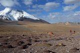 Towards The Summit Of Kongmaru La, Markha Valley, Ladakh, India Art Print