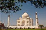 Asia, India, Taj Mahal with trees above as framing element Art Print