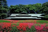 Imperial Palace, Tokyo, Japan Art Print