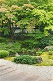 Sennyuji Temple Garden, Kyoto, Japan Art Print