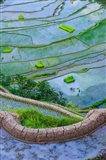 Rice Terraces Of Banaue, Philippines Art Print