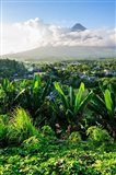 View From The Daraga Church On The Mount Mayon Volcano, Philippines Art Print