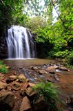 Ellinjaa Falls,  Waterfall Circuit, Queensland, Australia Art Print
