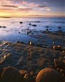 Sunset, Tasman Bay, South Island, New Zealand Art Print