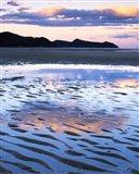 Coast, Abel Tasman National Park, New Zealand Art Print