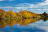 Autumn Colour And Clutha River At Kaitangata, South Island, New Zealand Art Print