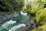 New Zealand, South Island, Crocked River Art Print