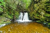 New Zealand, South Island, Hurunui, Waterfall Art Print