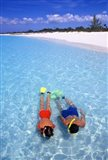 Snorkeling in the blue waters of the Bahamas Art Print